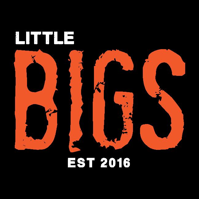 Little Bigs